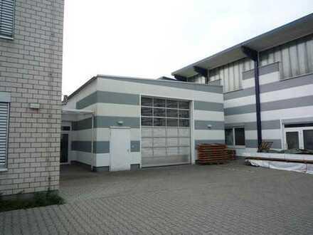 Halle, 230 m², provisionsfrei