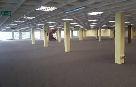 Geschäftshaus mit Potenzial*** 5200m² Verkaufsfläche + 50 Stellplätze neben Großmarkt Globus