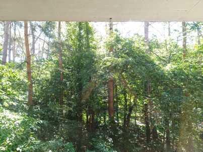 Drei Zimmer Wohnung in Karlsruhe, Waldstadt - von Privat ohne Makler