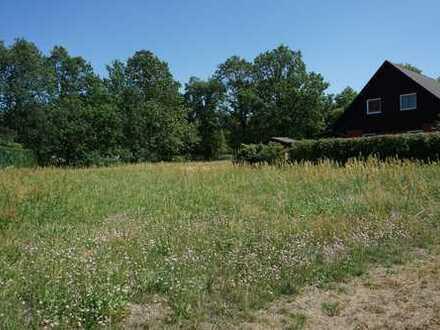 Ein Baugrundstück im Landkreis Prignitz zwischen Bad Wilsnack und Havelberg