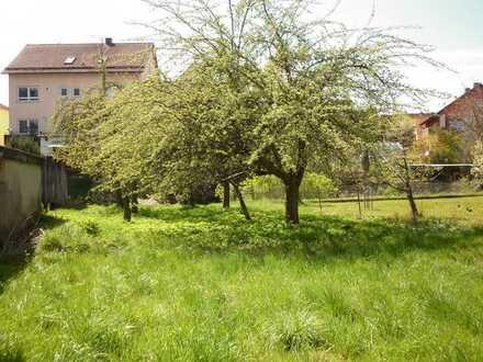 Grundstück mit altem Bauernhaus, Scheune und Wiese zu verkaufen