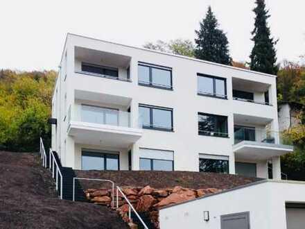 Neues, modernes Traumhaus mit Neckarblick