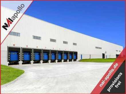 PROVISIONSFREI | TOP Hallenfläche | RAMPE | 10 m UKB | zu vermieten
