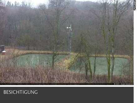 Teichanlage kpl. eingezäunt und geeignet und genehmigt für Gatterwild !!!