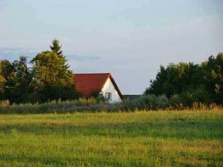 Schönes, geräumiges Haus mit zwei Zimmern in Brzeznica Kolonia