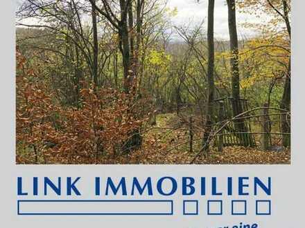 Freizeitgrundstück am Schumisberg - Hütte möglich