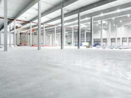 """BAUMÜLLER & CO."" ca. 30.000 m² NEUBAU Logistikfläche - Rampen-/ebenerdige Andienung - Nähe A3"