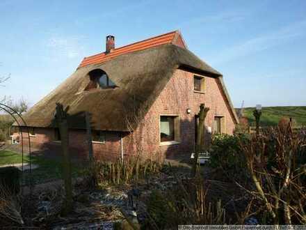 Reetdachhaus am Weserdeich!