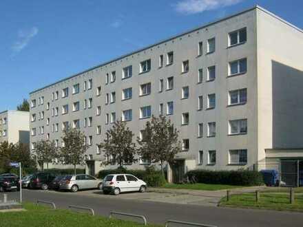 schöne 3-RWE in der Münsterstadt Bad Doberan