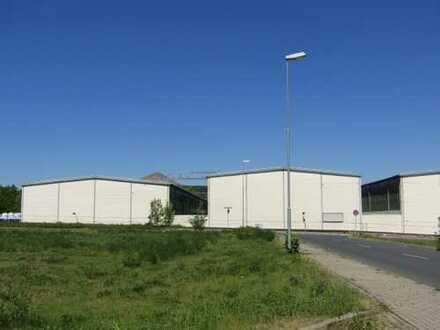 Industriehalle für Lager oder Produktion!