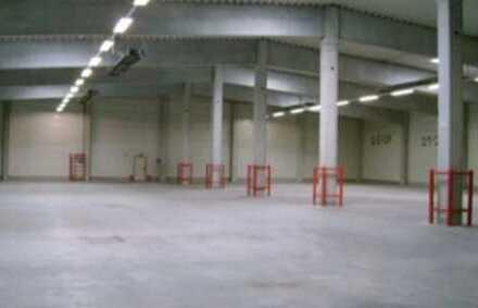 """""""BAUMÜLLER & CO."""" 10.000 m² - RAMPENANDIENUNG - A5"""