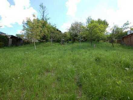Nutzen Sie die Gelegenheit! Großes Grundstück in Erbach zum fairen Preis!!!