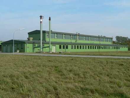 1578 m² Halle für die Nutzung als Lager oder Produktion