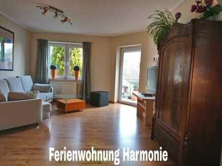 Schöne, geräumige, möbilierte zwei Zimmer Wohnung in Ahrweiler (Kreis), Bad Neuenahr-Ahrweiler
