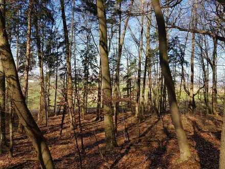 Waldgrundstück, Wald in 86444 Mühlhausen