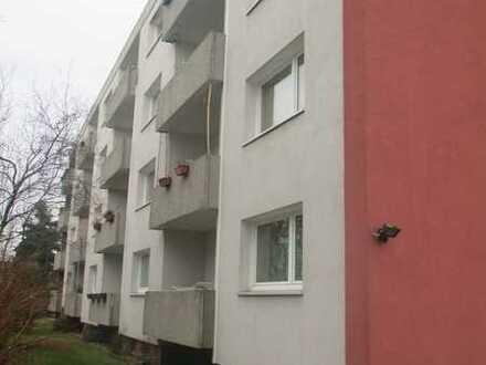 Vollständig renovierte 3-Raum-Wohnung mit Balkon in Braunschweig