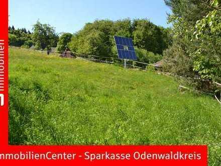 Für Gartenfreunde und Tierliebhaber - Großer Bauplatz in Unter-Mossau