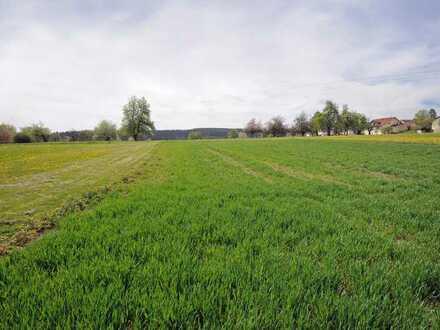 Landwirtschaftliche Flächen in Salzstetten