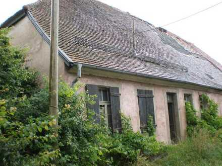 Bauernhaus in Niederkirchen/Amoshof