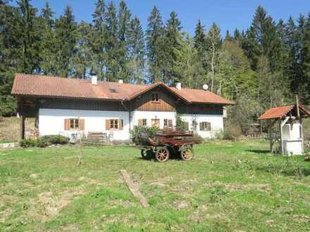 Excl. Landhaus mit ELW + ca. 16.000 m2 Grund (teils Pferdekoppeln) in idyllischer Alleinlage!