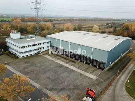 PROVISIONSFREI   22 TORE   ca. 2800 m² gepflegte Halle   Lager   Umschlag