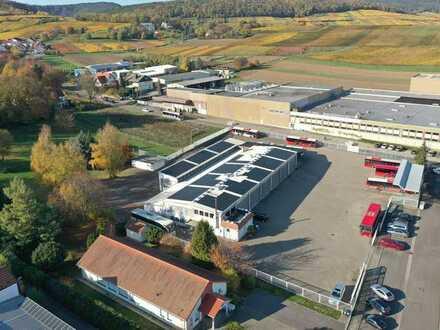 Gewerbeimmobilie auf über 11.700 m² Grundfläche - Bad Bergzabern  Großzügige Halle, Waschstraße, We