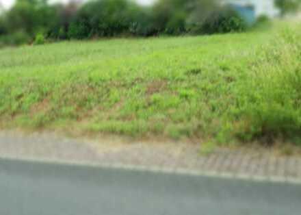 Großzügig geschnittenes Grundstück in Alzenau-Michelbach