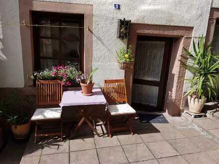 Schönes möbliertes 1-Zimmer-Apartment mit kleiner Terrasse und Einbauküche in Gleisweiler