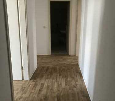 Große 2-Raum Wohnung in Parknähe
