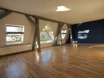 Bild_Dachgeschoss in Köpenicker Belage, im Winter Schloss- und Wasserblick, saniert, Bad neu, ruhig, hell