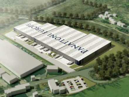 Projektentwicklung am Hanauer Kreuz! Provisionsfrei! 12.800 m² Hallenfläche!