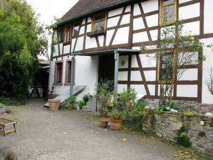 Sehr schöne 3 Zimmer Wohnung in Fachwerkanwesen am Main/Maintal