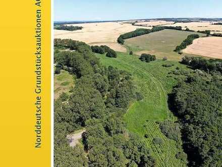 Forstwirtschaftliche Flächen in 18551 Glowe/ Insel Rügen OT Baldereck und Bobbin