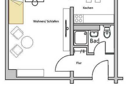 Sanierte- Helle 1- Raum- Wohnung im Grünem