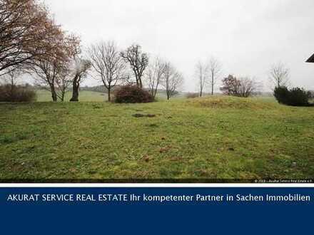 DHH mit traumhaftem Garten in Gilching / Steinlach