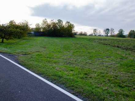 1.910 m² großes Freizeitgrundstück mit Traktorgarage am Ortsrand von  Königstein