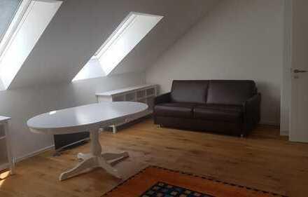 Möbliertes Dachzimmer 19 qm (Bodenfläche 23 qm) mit eigenem Bad 5 qm im Günterstal