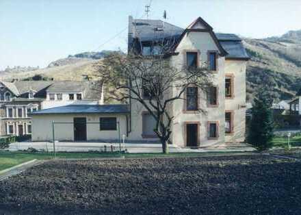Großzügige Wohnung am Weinberg & Trarbacher Gymnasium