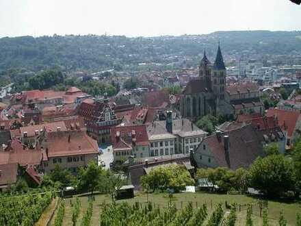Esslingen-City, sehr hübsche, geräumige, helle 3 1/2 Zimmerwohnung