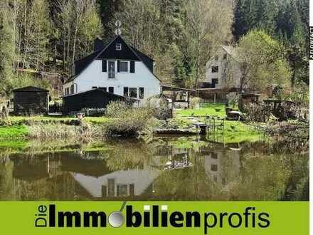 Haus am Fluss: Idyllisch gelegenes, sehr gepflegtes Einfamilienhaus bei Arzberg