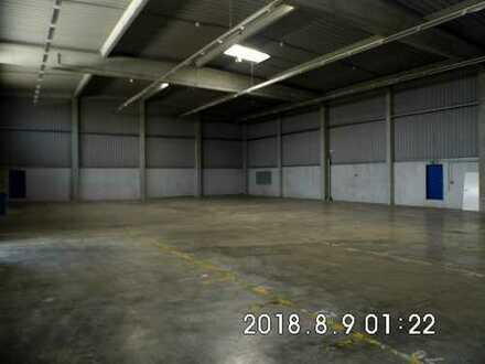 Erhard Gewerbemakler Schifferstadt projektierte Lagerhalle 2000 m² zu vermieten
