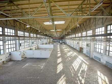 Freie Lagerflächen ab 20 m2 und 5,- EUR/m2