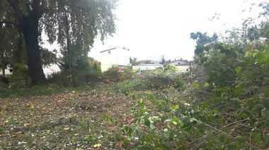 Forst - Teilbares Baugrundstück, Baufeld in attraktiver Lage