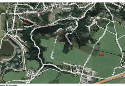 Waldgrundstück mit 1.550 qm in Dresden / Oberwartha