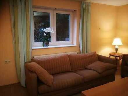 Möblierte modernisierte 2-Zimmer-Wohnung mit Einbauküche in Frammersbach