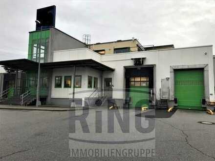 Produktions- / Lager- / Kühlhalle im südlichen Landkreis Amberg
