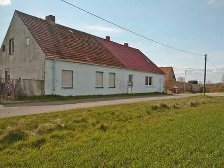 2 Doppelhaushälften: Perfekt für die Corona-Flucht aus der Stadt unweit der Peene und der Ostsee