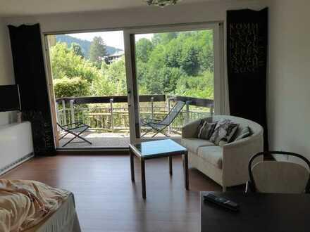 Schönes, möbliertes 1-Zimmer-Appartement in 72275 Alpirsbach zu vermieten