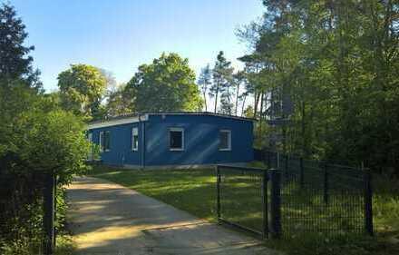Ferienhaus im Grünen mit vier Zimmern unweit Netzener See