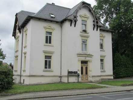 Geräumige 2-Raum-Wohnung im Erdgeschoss der denkmalgeschützten Villa mit PKW-Stellplatz